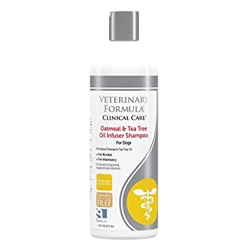 Veterinary Formula Clinical Care Oatmeal and Tea Tree Oil Infuser Shampoo for Dogs – Fast-Acting Gentle 100% Safe Medicated Shampoo to Treat Fungal Bacterial and Viral Skin Infections in Dogs 16oz