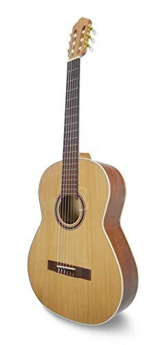 APC Instruments 3C Konzert Gitarre