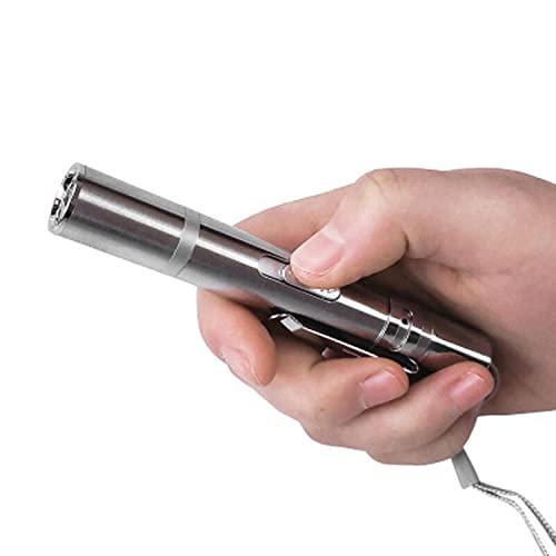 DAPAIZI UV-Taschenlampe, Hunde- und Sportspielzeug-Stick, USB wiederaufladbar, LED-Spielzeug, interaktives Spielzeug