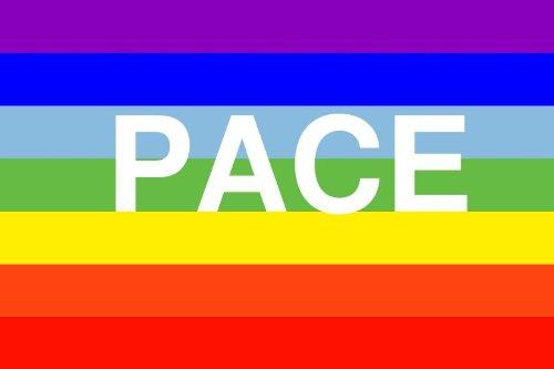Michael & Rene Pflüger Barmstedt 8,4 x 5,4 cm Autoaufkleber Fahne Regenbogen Pace Sticker Aufkleber fürs Auto Motorrad Handy Laptop Frieden Peace