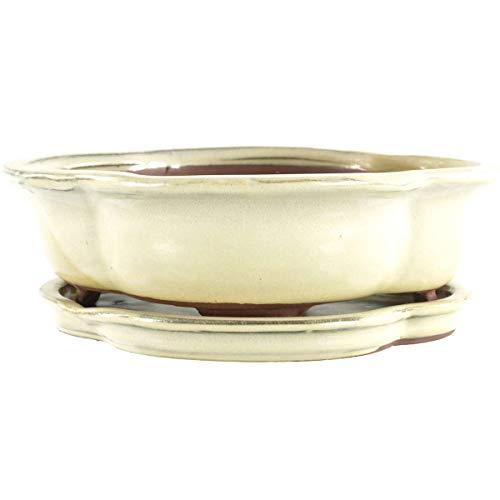 Bonsaischale mit Untersetzer 25x20.5x7.5cm Weiß Lotusförmig Glasiert