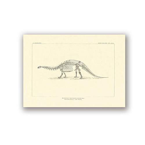 "YangMENGDAN druk op canvas met fossiele dinosaurus eleters uit Noord-Amerika paleontologie canvas schilderij botten foto 23.6""x 35.4""(60x90cm) Senza Cornice3"