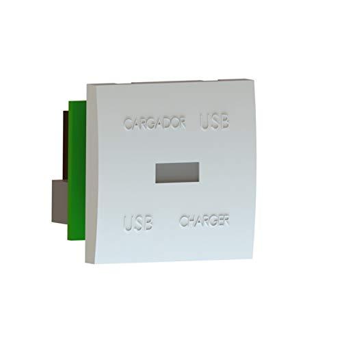 Módulo plano de 45x45 con cargador USB 5V 2A, gama 45, acabado blanco nieve, 4,5 x 4,5 x 3,5 centímetros (referencia: EDUSBC2/4)