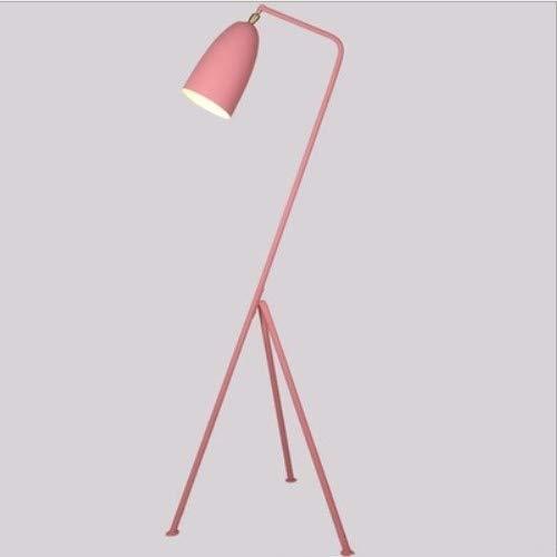 Koper E27 5W Modern Iron Painted LED Verstelbare Floor Lamp for Living Room, het bed, studeerkamer, Hotel Room Wit Licht Simple Creative Decoration Floor Lamp (Color : Pink)