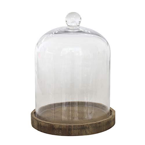 Stonebriar - Campana de Vidrio Transparente con Base de Madera rústica (20,3 cm), Color café