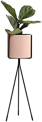 wsbdking Moderna sencillez interior maceta de la maceta de la planta de la planta de la planta de la plantilla del estante de la exhibición del metal Art Garden Herb Bonsai Shelves Estantes al aire li