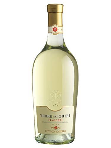 TERRE DEI GRIFI Frascati DOC - Fontana Candida - Vino bianco fermo 2019 - Bottiglia 750 ml