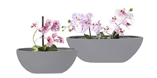 kamelshopping 2-er Set Keramik Pflanzschale | oval | weiß oder grau | für den Innenbereich | vielseitig einsetzbar (grau)