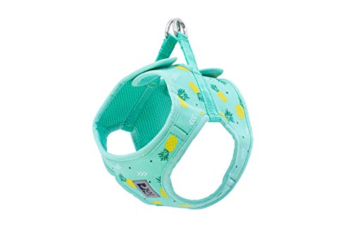 RC Pet Products Cirque Soft Walking Step-in Dog Harness, Pineapple Parade, Small