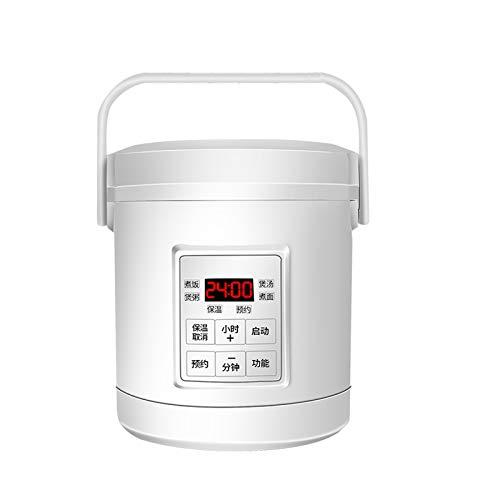 microondas para coche 24v fabricante WSJTT