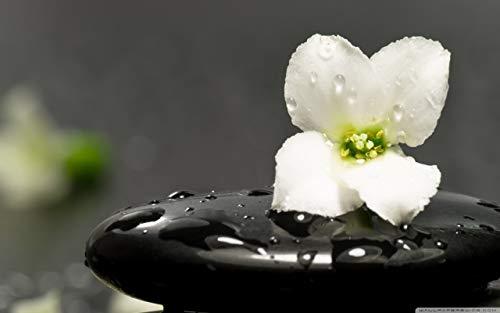 Diy 1000 Comprimidos Piedras Zen Y Flor Rompecabezas