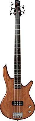 Ibanez Gio GSR105EX 5-String Bass Guitar