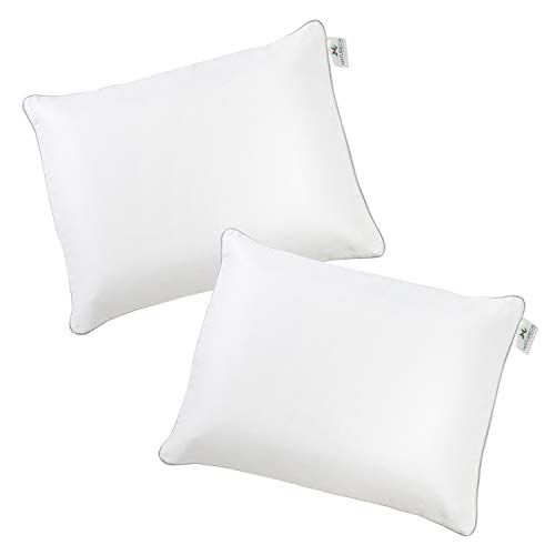 Juego de 2 fundas de almohada para niños pequeños, 100 % satén de algodón, muy suave, funda de almohada para niños de 30 x 40 cm, con cremallera oculta