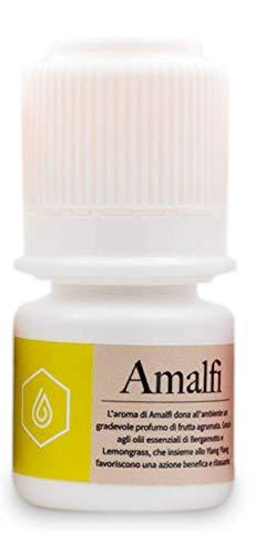 Amalfi – Perfume de ambiente purificante para Air Washer, purificadores y humidificadores en frío, favorece el bienestar y la relajación