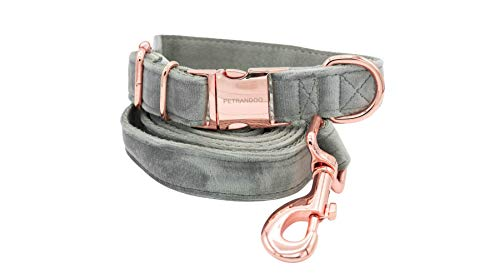 Petrandoo Hundehalsband mit Leine im Set - Samt Optik Grau mit Rosé Gold - Robust und Winterfest… (22-38 cm)