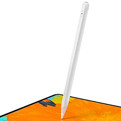 Stylus Pen for Apple iPad with Palm Rejection?Attaches Magnetically, Pixel-Perfect Precision, Compatible with iPad (7th)/iPad Air (3rd) /iPad mini(5th)/iPad Pro 11(1st/2nd)/iPad Pro12.9(3rd and 4th)