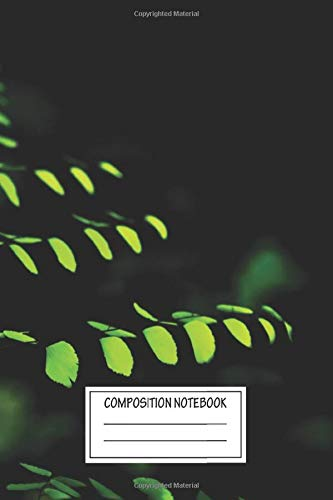 Composition Notebook: Landscapes Costa Rican Fern Flowers Wide Ruled Note Book, Diary, Planner, Journal for Writing