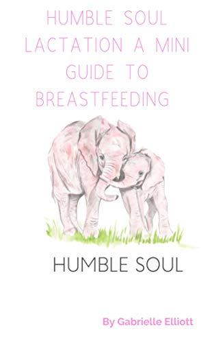 Humble Soul Lactation A Mini Guide To Breastfeeding (English Edition)