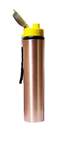 NK GLOBAL Kupferflasche Flip-Top-Wasserflasche für Flüssigkeiten, auslaufsichere ayurvedische Vorteile Sport, Fitnessstudio, Yoga Wiederverwendbare Trinkflasche 950 ml Reiseflasche 1 STK. Geschenk