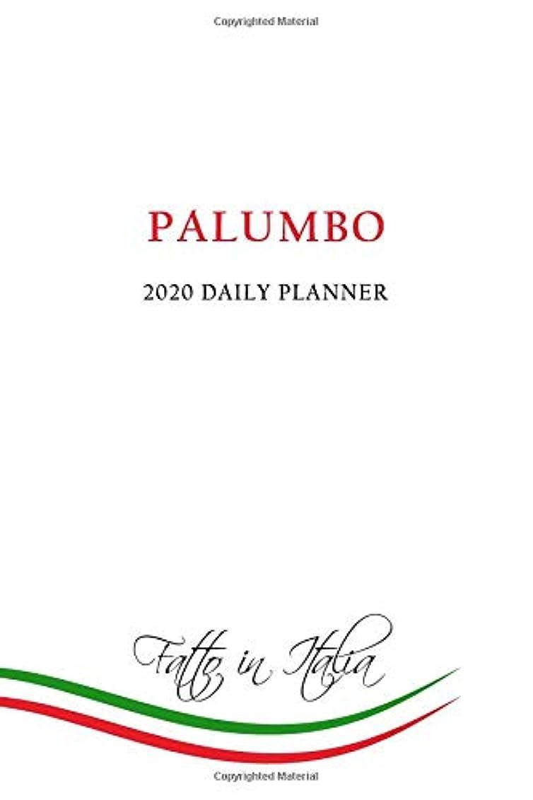 最大化する湾コンテンポラリー2020 Daily Planner: Palumbo Family