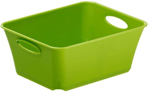 Rotho Living kleine Aufbewahrungsbox/Dekobox 0,5l, Kunststoff (PP) BPA-frei, grün, C7/0,5l (14,6 x 11,4 x 6,0 cm)