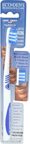 Terradent 31 Toothbrush...