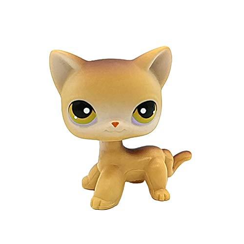 wdd Littlest Pet Shop lps Short Hair Cat #19 Original Brown White Yellow Green Eye