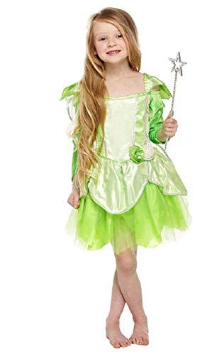 Fancy Me Vert de Filles Jardin Fée Lutin Conte de Fée Halloween Déguisement Costume Tenue 4-12 Ans - Vert, Vert, 10-12 Years