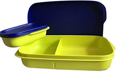 Tupperware Mylunch Medium Plastic Tiffin Box, Set of 1 (500ml)