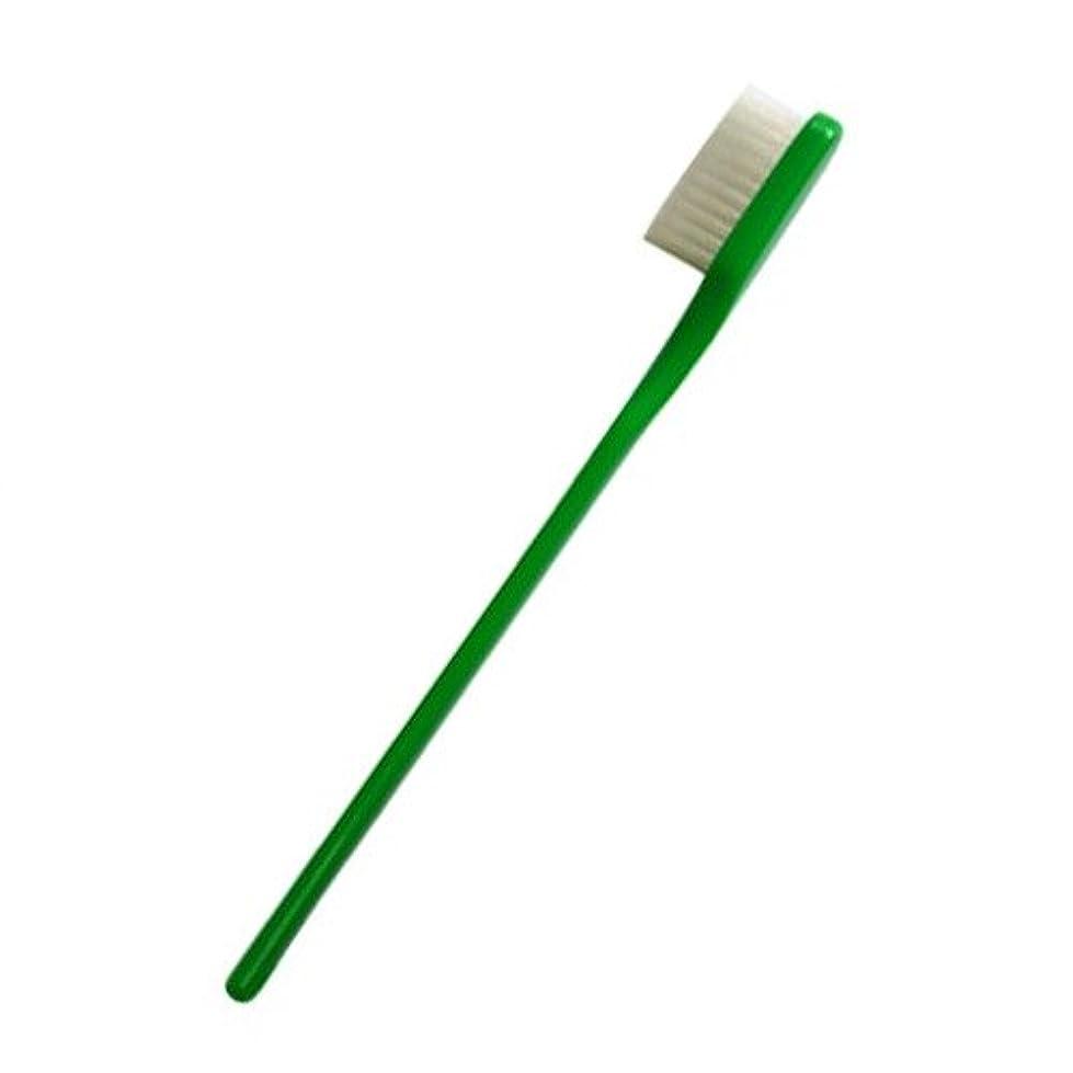 頼る崇拝する納屋PHB 歯ブラシ 大人用 グリーン