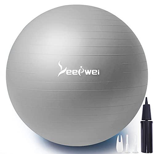 LEEPWEI バランスボール ヨガボール 空気入れ ボール ピラティスボール 厚い 環境にやさしい ジムボール エクササイズボール アンチバースト 耐荷重300kg 筋トレストレッチ ダイエット ヨガ 椅子 45cm/55cm/65cm/75�p ポンプ付