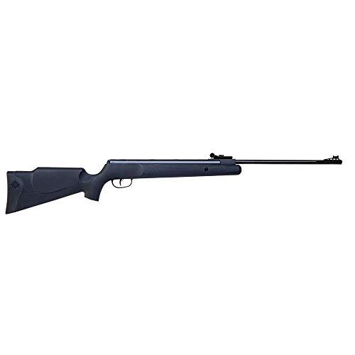 Crosman Fury air rifle for shooting rats