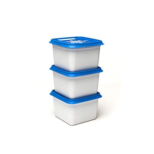 Amuse Gefrierdose, Kunststoff (PP), weiß/blau, 3 x 750 ml