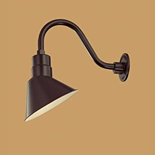 Millennium Lighting RAS10-ABR-RGN10-AL Angle Shade 10