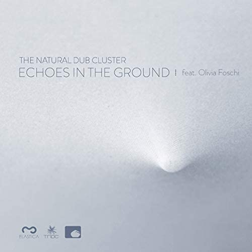 The Natural Dub Cluster, Paolo Baldini & DeDuBros