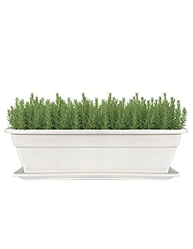 Jardin202 - Jardinera 60 cm Blanco con Plato Incorporado - Maceta con Agujeros de Drenaje