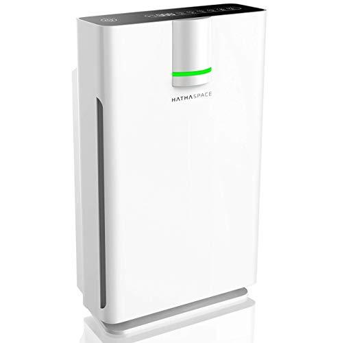 large air purifier hepa - 1