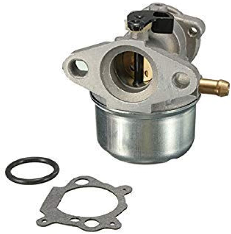 Carburetor Carb for Briggs & Stratton 799868 498254 497347 497314 498170 497586