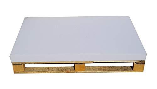 Master Palettenkissen, Palettensofa, Palettenpolster, Matratzenkissen 120x80x8 cm Schaumstoff für Europalette, Hundekissen, Auflage (Schaumstoff ohne Bezug) 120x80x5