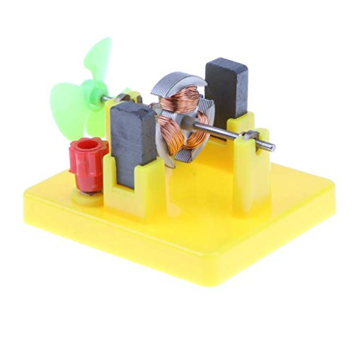SGerste - Mini Modelo de Motor para niños con Ventilador, Juguete de física, experimentos eléctricos, Juguetes educativos, Suministros Escolares para Estudiantes