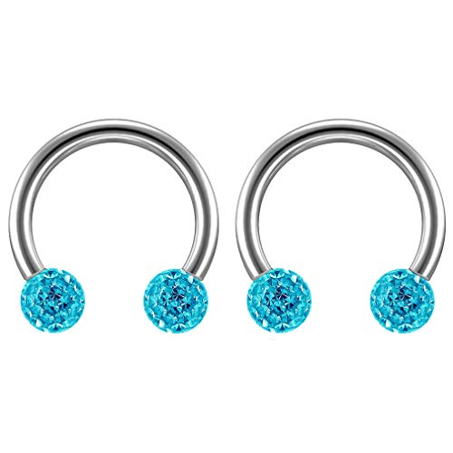 2 st 16 Guage 1,2 mm Circulaire Barbell Oorbellen Daith Forward Helix 16 g 1,2 mm Titanium Tragus Anti Rook Rim Oor Lobe Wenkbrauw Lip Cartilage Pinna Bridge Aqua