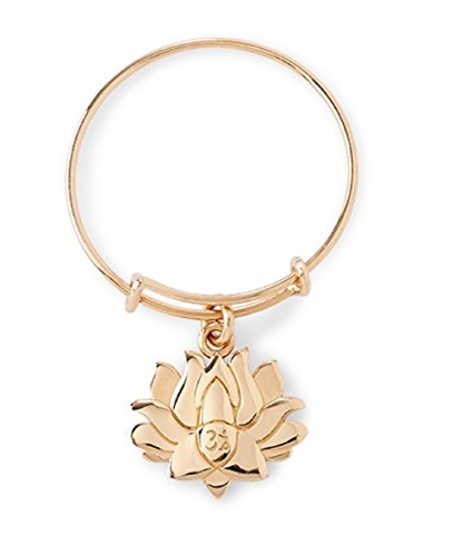 Alex and Ani Lotus Peace Petals Anillo de alambre expandible chapado en oro de 14 quilates, PC14SER04G