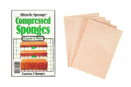 Color Wheel 3-Inch by 4-Inch Miracle Compressed Sponges