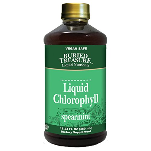 Buried Treasure Liquid Chlorophyll Vegan Dietary Supplement Spearmint All Natural 100 mg Chlorophyll BPA Free 16 oz (1 Pack)