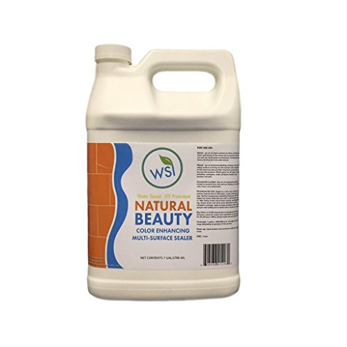 Wash Safe Industries WS-NBEAUT-1 Natural Beauty Sealer, 1 gal