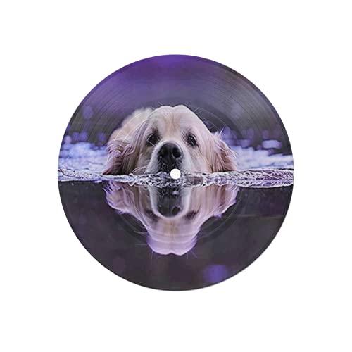 Posavasos Disco para Bebidas,Perro en el río,Absorbente 6 Piezas Posavasos de Disco Protección Efectiva Escritorio