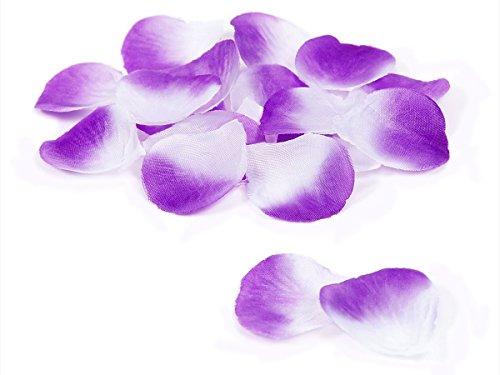 Doutop-Petali di rosa artificiali, effetto seta, 1000 pezzi, per matrimonio, festa a forma di fiore con petali di matrimonio Flora Favor purple+white