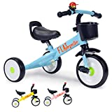 Flat Perspective Kids Trike - for Children, Baby Tricycle for 2-5 Years Old, 15.52519 Inches for Toddler Boys Girls, Blue kindercraft Trike