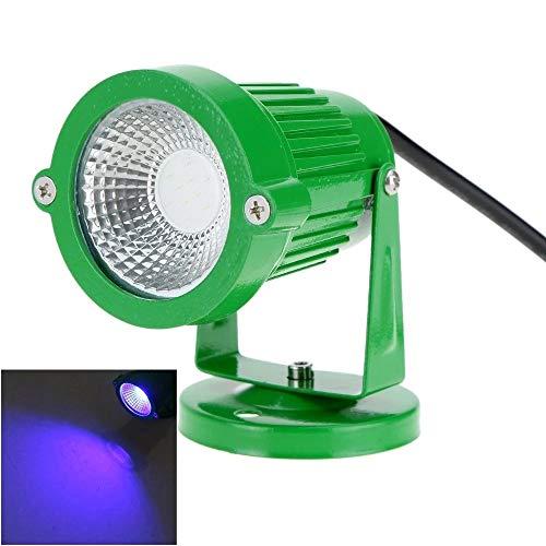 HO-TBO Lampes solaires à l'air libre, 6 W 12 V AC DC IP65 Vert du gazon Aluminium de la lampe Spot Lumière bleue de haute puissance Lumières de la décoration du jardin (Couleur : bleu, Taille : One Size)