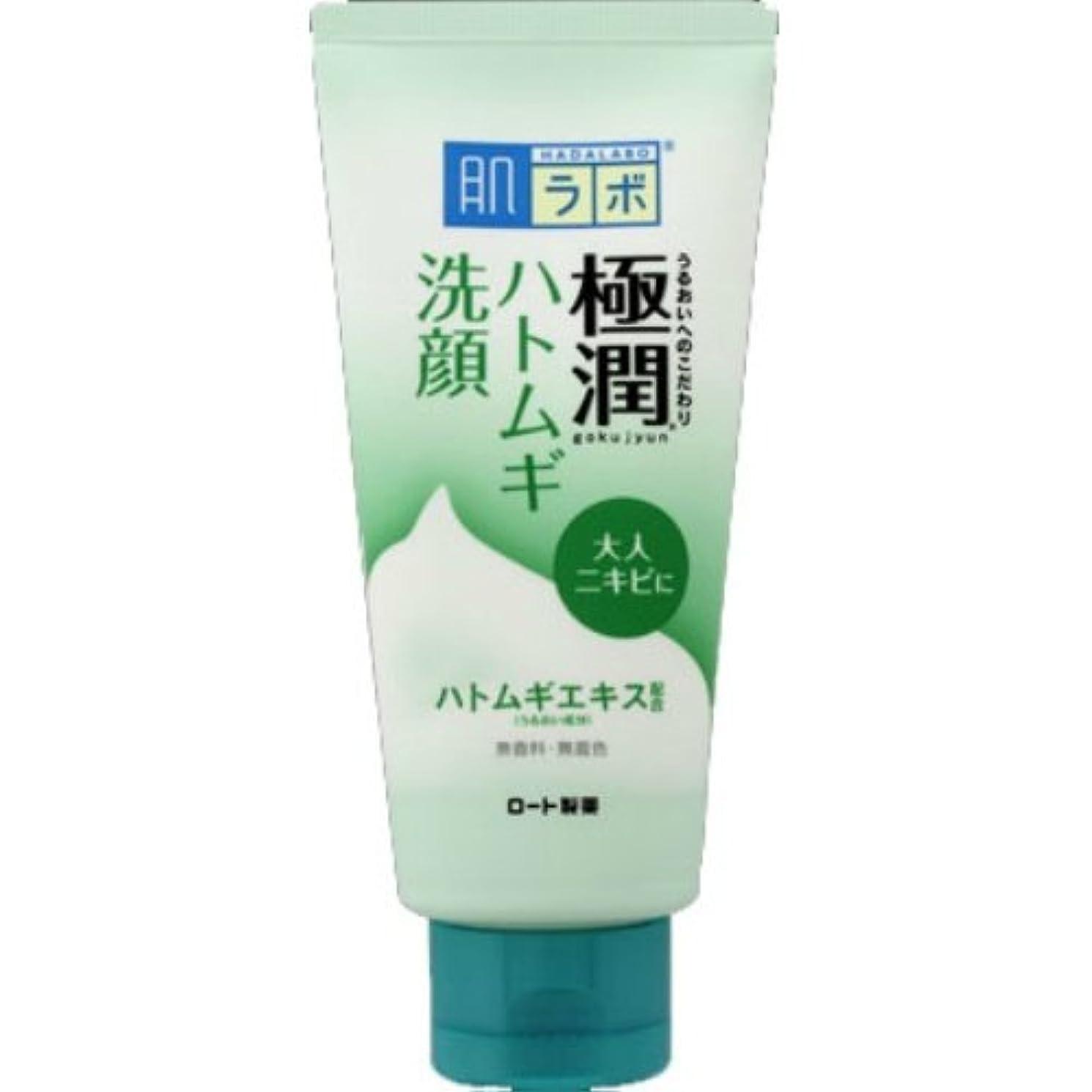 温室かる先例肌ラボ 極潤ハトムギ洗顔フォーム 100g × 60個セット